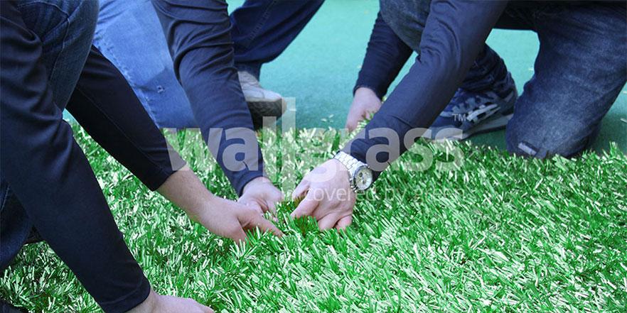 grass-wall